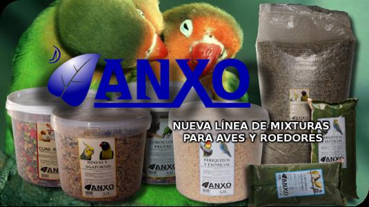 Nueva línea de productos ANXO