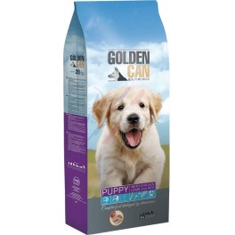 Ortín Golden Can Puppy