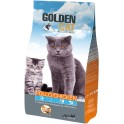 Golden Cat chicken